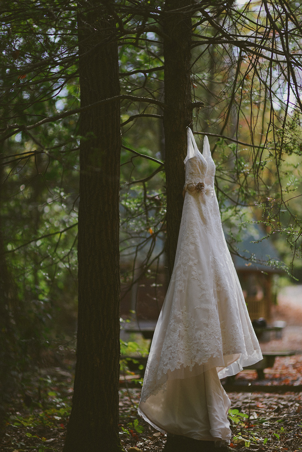 adventures on the gorge wedding photography wv