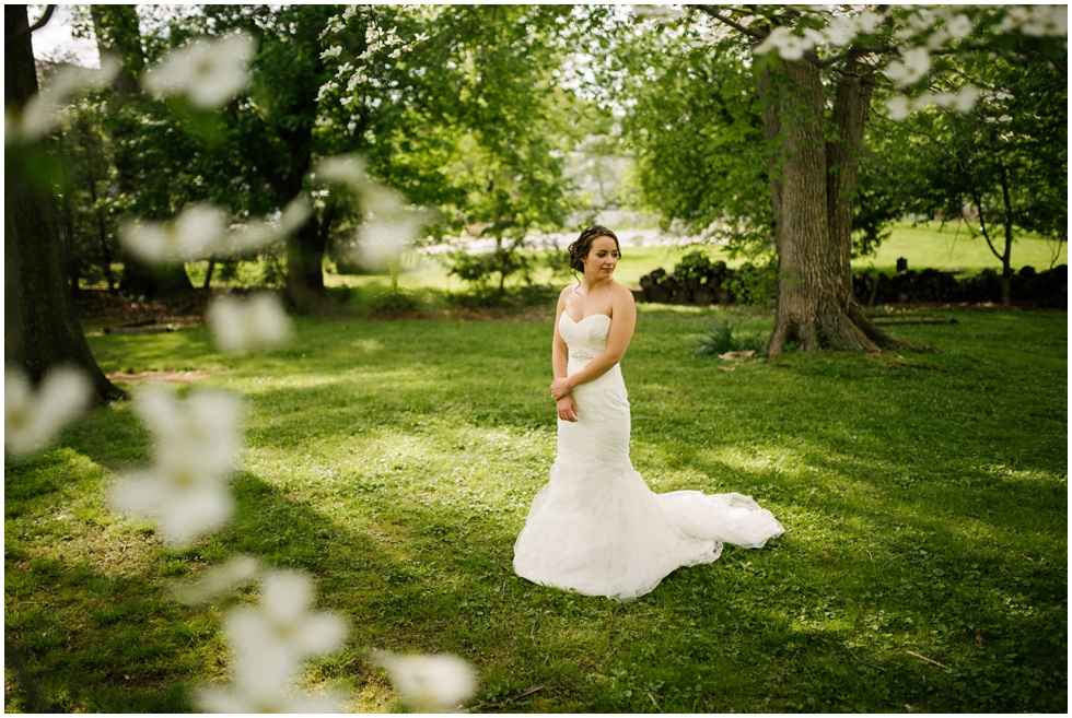 west-virginia-bridal-portrait