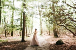wedding photography at coopers rock