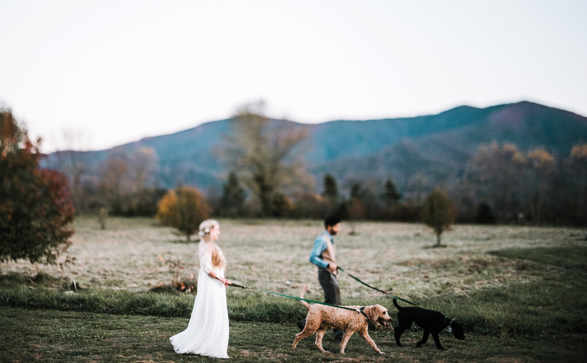 luray virginia weddings