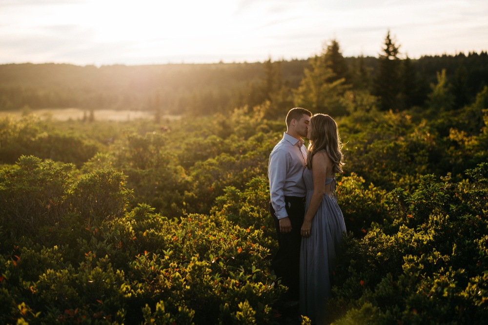 engagement photos taken at dolly sods