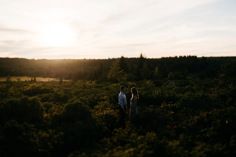 dolly sods portraits