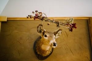 detail shot at knotty pine lodge