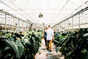 wv greenhouse engagement
