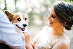 wv wedding photography at coopers rock